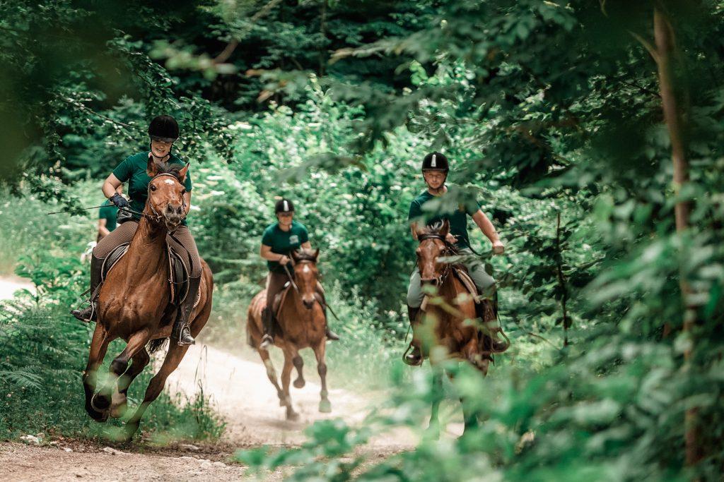 Ranch Equus Igni_0-59_Foto studio Butina